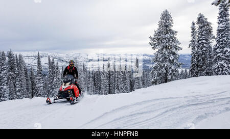 Snowmobiling through the woods on the way to Burgdorf Hot Springs outside McCall, ID. - Stock Photo