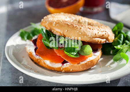 Bagel with cream cheese, smoked salmon and beetroot - Stock Photo
