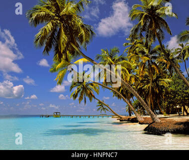 Kuda Bandos Island, North Male Atoll, Maldives, Maldive Republic, Indian Ocean Atoll - Stock Photo