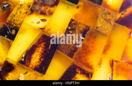 Amber from thre Baltic Sea - Stock Photo