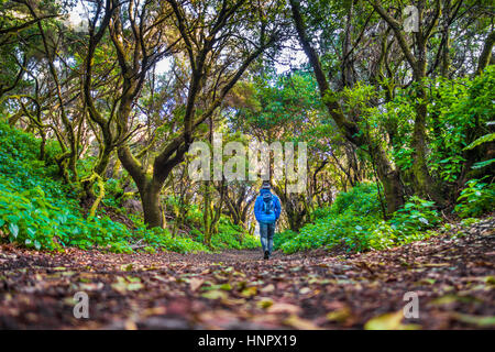 Low angle view of male tourist hiking through mystic forest of ancient trees on the beautiful island of El Hierro - Stock Photo
