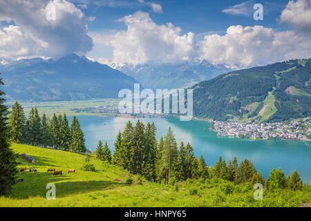 Beautiful scenery in the Alps with clear lake and green meadows full of blooming flowers on a sunny day with blue - Stock Photo