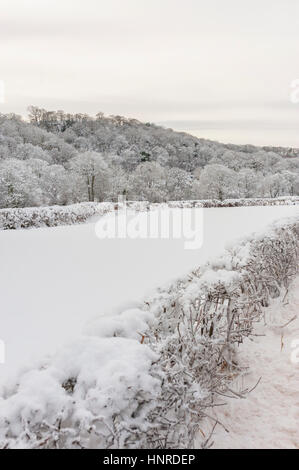 snow covered trees and fields alonside the A548 near Llanfair talhaiarn north wales - Stock Photo