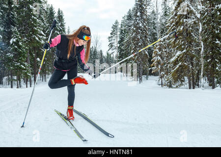 Cross-country skiing woman doing classic nordic cross country skiing in trail tracks in snow covered forest - Stock Photo