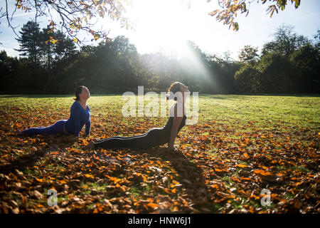 Two women doing yoga in park on autumn day - Stock Photo