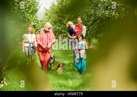 Family walking dog in apple orchard - Stock Photo