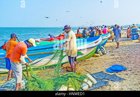 NEGOMBO, SRI LANKA - NOVEMBER 25, 2016: The fishermen get fish out of the net next to their boat on seashore, on - Stock Photo