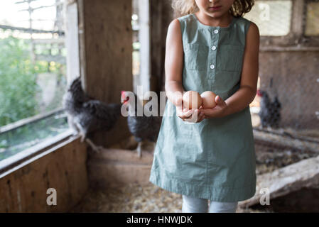Girl in chicken coop, holding fresh eggs, mid section - Stock Photo