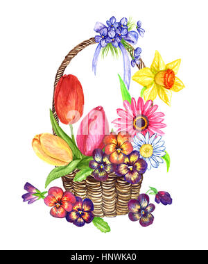 A variety of spring flowers: tulips, pansies, violets, daisy, gerbera, narcissus in wicker basket, design for a - Stock Photo