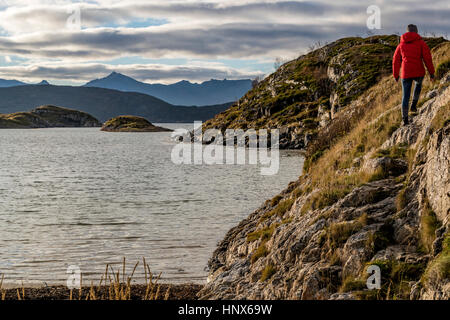 Woman hiking on Sommaroy Island in autumn, Arctic Norway - Stock Photo