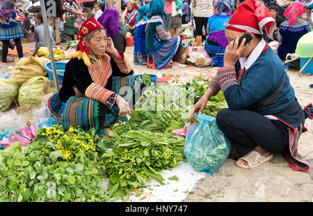 Hmong woman selling her home grown green leafy vegetables,  farmers market, customer using her cell phone,  native - Stock Photo