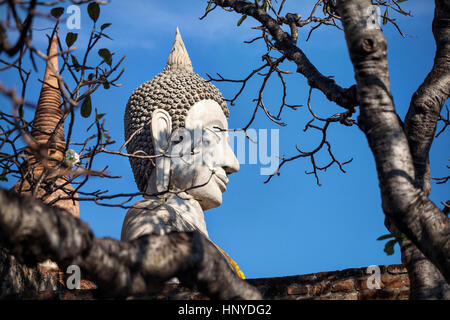 Big Buddha statue in Wat Yai Chai Mongkol monastery in Ayuttaya, Thailand - Stock Photo