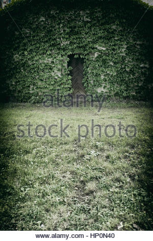 Old tower building ivy covered wooden door spooky - Stock Photo