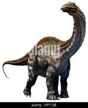 Apatosaurus - Stock Photo