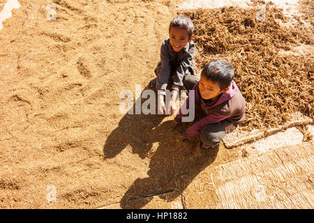 TAPLEJUNG, NEPAL - 13 December 2016: Nepali children playing in grains of threshed black millet, 13 December 2016 - Stock Photo