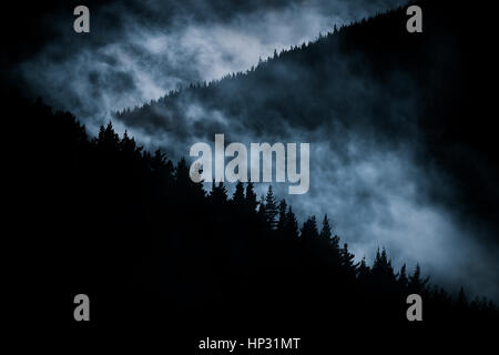 scary foggy mountain at nigh - Stock Photo