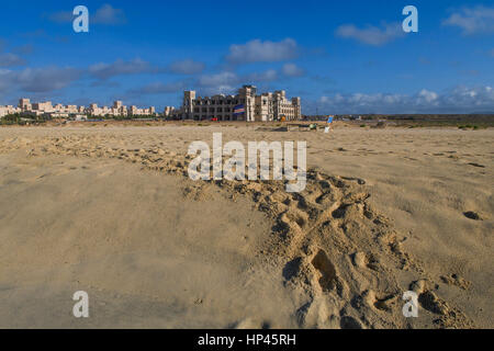Turtle tracks going towards hotel, in sand on Cape Verde beach, showing national flag - Stock Photo