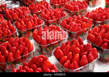dealer sells fresh israeli strawberries infront of his shop at carmel market, tel aviv, israel - Stock Photo