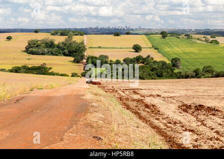 Arapongas, Brazil. 18th February, 2017. Blue sky over soybean plantation field farm. A farmer drives his tractor - Stock Photo