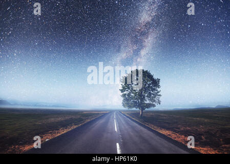 Asphalt road and lonely tree under a starry night sky - Stock Photo