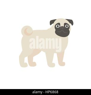 pug vector illustration - Stock Photo