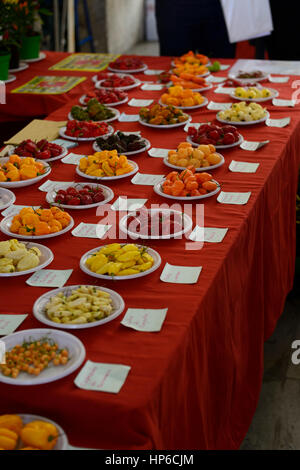 chilli peppers, different types, mild, medium, hot, mix, mixed, red, yellow, green, chillis, on sale hot spice, - Stock Photo