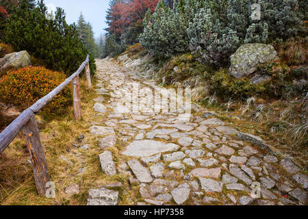 Stone Path In The Mountains Stock Photo Royalty Free