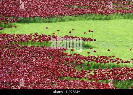 Blood Swept Lands and Seas of Red - remembrance installation by the Tower of London - Stock Photo