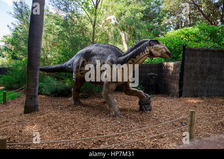 Standing Edmontosaurus display model in Perth Zoo as part of Zoorassic exhibition - Stock Photo