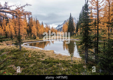 Autumn at Simpson Pass, Banff National Park, Alberta, Canada - Stock Photo