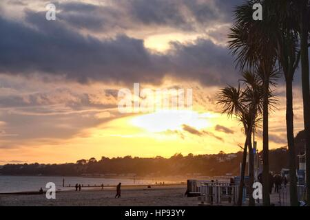 Bournemouth, Dorset, UK. 20 February 2017. Palm trees  are silhouetted by the setting sun on Bournemouth beach where - Stock Photo