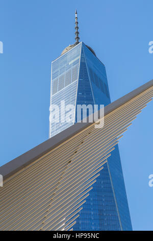 The ribbed wings of the Oculus World Trade Center Transportation Hub contrast with One World Trade Center (Freedom - Stock Photo