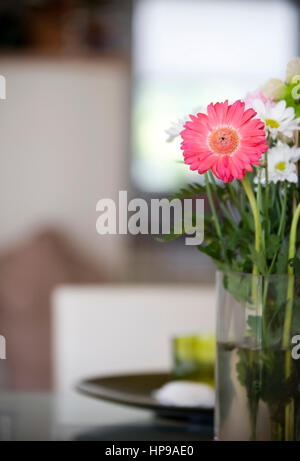 Blumenvase mit Gerbera im Wohnraum - flower vase with gerbera in living room - Stock Photo