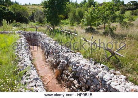 trench, dolina dei bersaglieri, I world war, carso ...