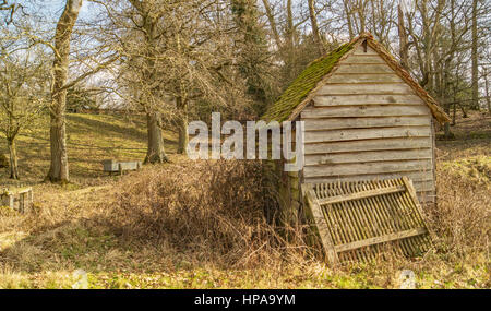 The Old Overgrown Shed in a field - Stock Photo