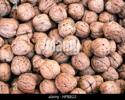 Walnuts in a big bunch ready to eat - Stock Photo