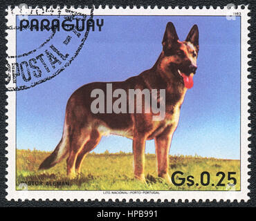 A stamp printed in Paraguay  shows a  German Shepherd Dog , from series Breed of dogs,  1983 - Stock Photo