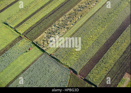 Bird's Eye View of the Fields and Agricultural Parcel. - Stock Photo