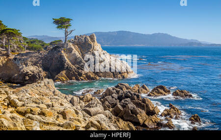 Classic postcard view of famous Lone Cypress, a landmark on a granite hillside off California's scenic 17-mile drive - Stock Photo