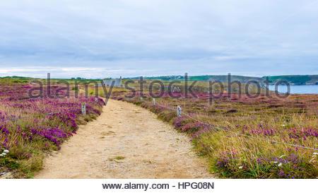 France, Brittany (Bretagne), Finistere department, Cieden-Cap-Sizun. Rocky coastline at Pointe du Van. - Stock Photo