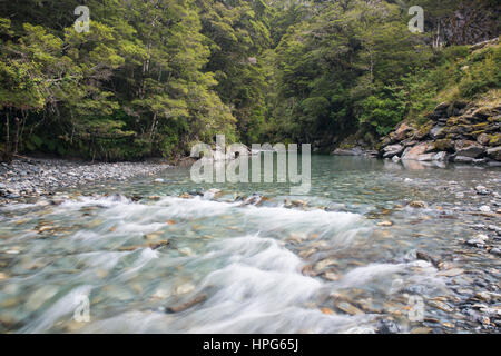 Haast Pass, Mount Aspiring National Park, West Coast, New Zealand. The Haast River near Fantail Falls. - Stock Photo