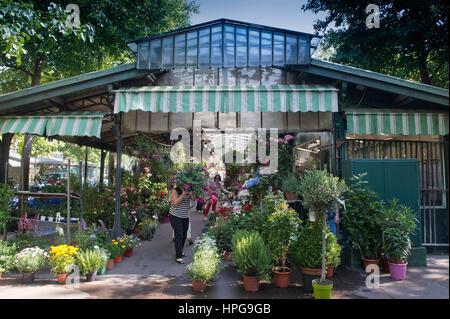 France. Paris (75), 4th arrondissement. Île de la Cite, Place Louis Lepine, Flower market renamed 'Marche aux fleurs - Stock Photo