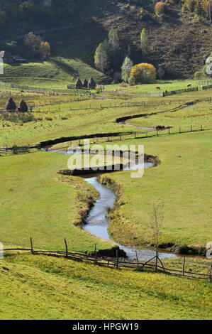 Meandering small watercourse in a green meadow - Stock Photo