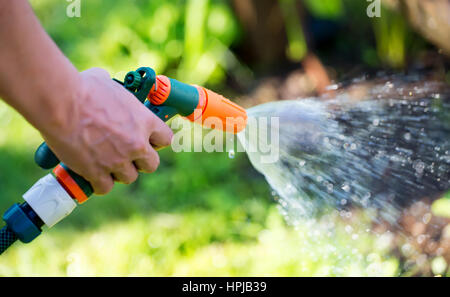 ... Woman Holding Hose Sprayer Nozzle In Hand And Watering Garden. Shallow  Depth Of Field