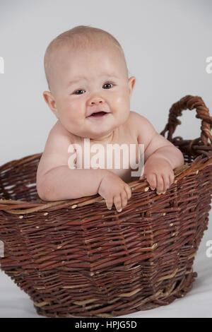 Model released , Baby, 10 Monate, im Korb - baby in basket