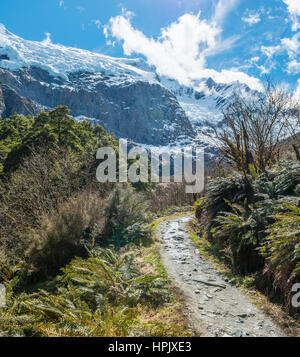 Hiking trail, Rob Roy Glacier, Mount Aspiring National Park, Otago, Southland, New Zealand - Stock Photo