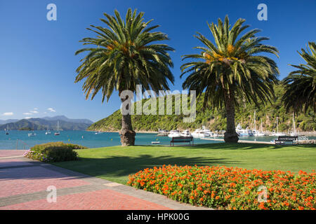 Picton, Marlborough, New Zealand. View from gardens to the palm-lined waterfront of Picton Harbour and distant hills - Stock Photo