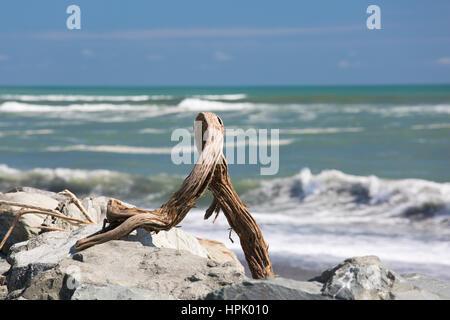 Hokitika, West Coast, New Zealand. Driftwood washed up onto rocky shore by powerful waves from the Tasman Sea. - Stock Photo