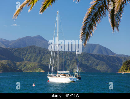 Picton, Marlborough, New Zealand. View across Picton Harbour to Queen Charlotte Sound, yachts at anchor. - Stock Photo