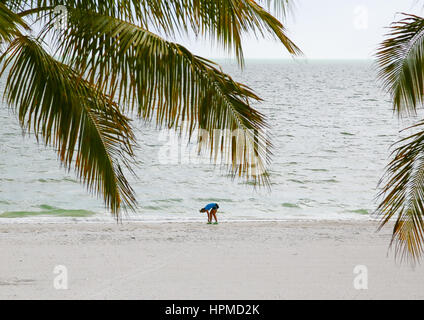 Fort Myers Beach, USA - May 11, 2015: Young woman tying up her shoelaces and getting ready for running on the beach. - Stock Photo